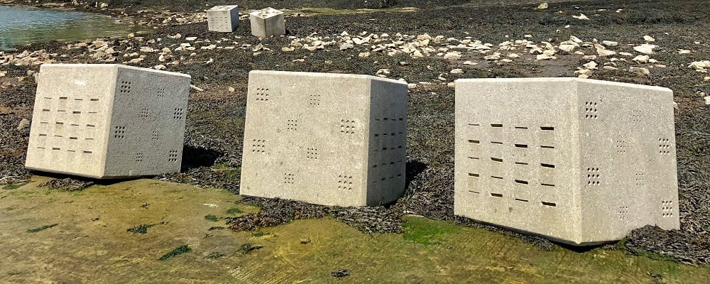 ARC Marine Constructs and Deploys 5 Intertidal BIO Blocks for the University of Plymouth